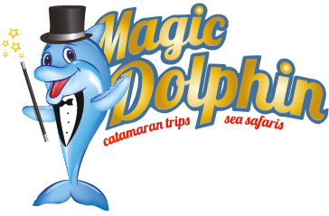Magic Dolphin